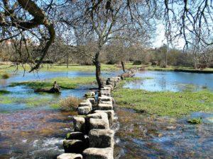 Vista general del río Yeltes a su paso por Perniculas. / Foto J. Mayordomo