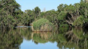 Los humedales del río Yeltes, durante un tercio del año escasos de agua, probablemente desaparecerían./ Foto J.M.