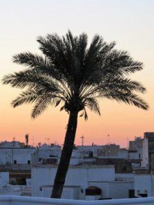 Sobre los tejados de Sevilla al amanecer./ J. Mayordomo