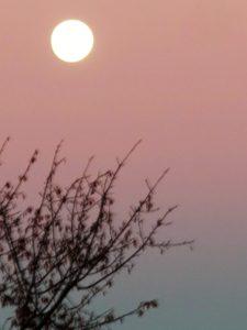 Noche de luna./ Foto J.M.