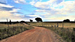 Por los caminos del olvido./ Foto J.M.