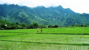En algún lugar de Vietnam./ Foto J.M: