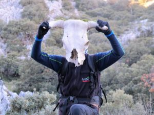 Retrato con cabeza de vaca./ Foto J.M.