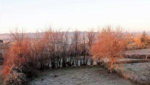 Paisaje de invierno./ Foto J.M