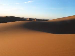25. Sueños del desierto