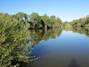 Humedal en el río Yeltes, ¿sobrevivirá a la mina de uranio?/ Foto J.M.