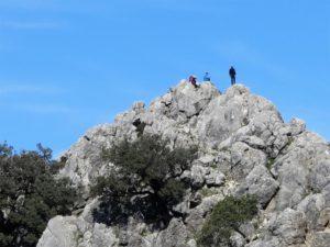 Correcaminos en la cumbre de la Silla./ Foto J.M