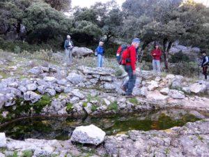 El estanque de las ninfas./ Foto J.M.
