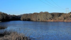El río Yeltes a su paso por Perniculás./ Foto J.M.