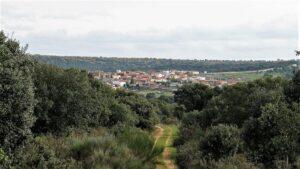 Villares de Yeltes y su bosque mediterráneo, uno de los pueblos que se verían mas afectados por la apertura de la mina de uranio./ Foto J.M.