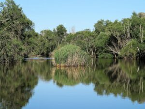 """Paraje conocido como la Isla, en el río Yeltes, y """"corazón"""" del caozo de los Pontones./ Foto J.M."""